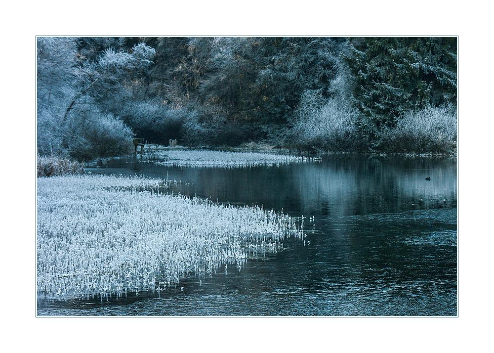 Am Märchensee... - oder: Kalte Ästhetik...   ;-))