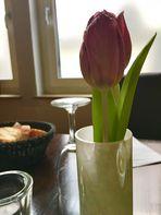 am Mittwoch ....Tulpen