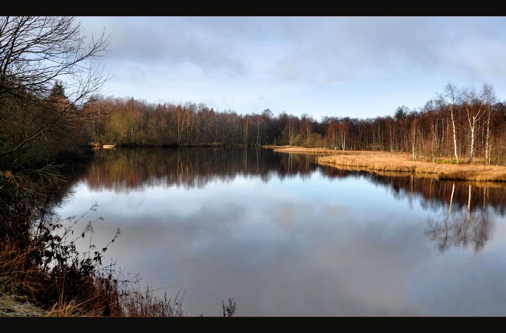 am Moorsee...