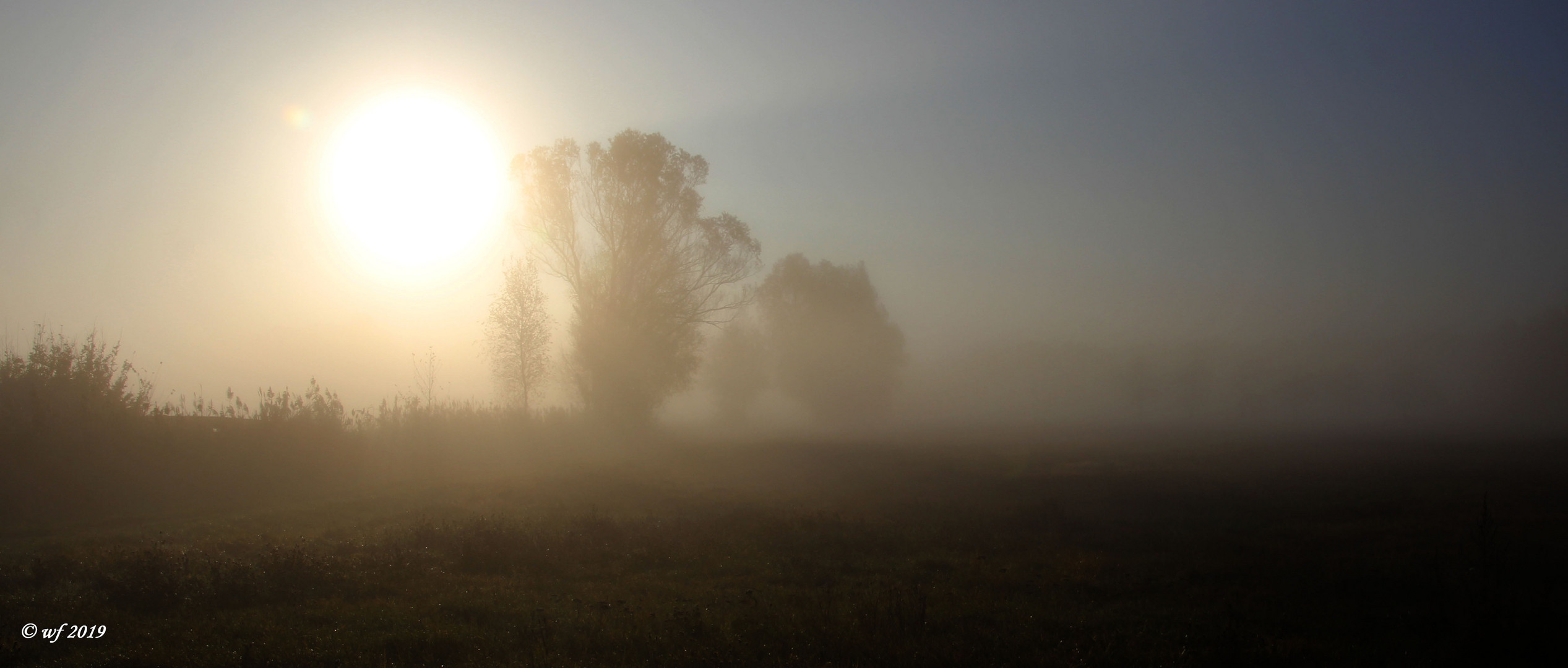 Am Morgen (2)