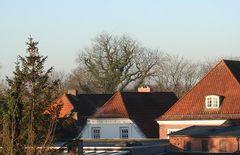 Am Morgen prägen mehr die Dächer das Bild