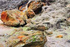 Am Morsum Kliff # 9772