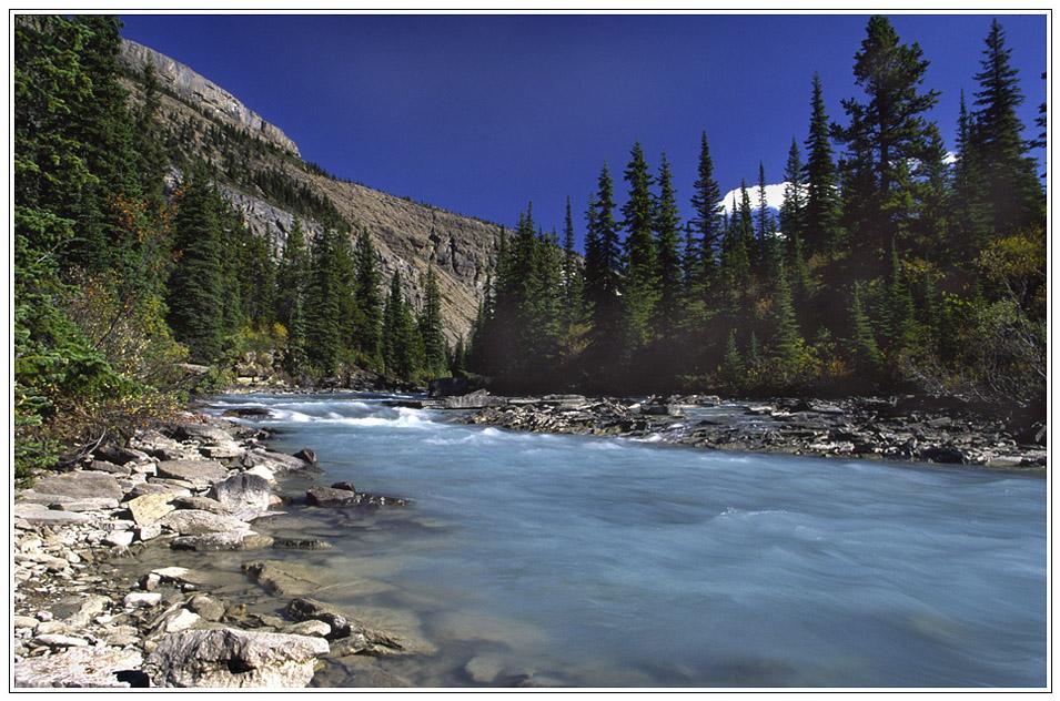 Am Mount Robson