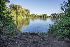 am Niederwaldsee