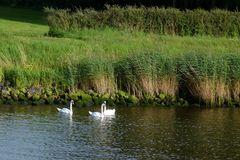 Am Nord-Ostsee-Kanal oder am....