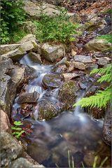 Am Radauer Wasserfall