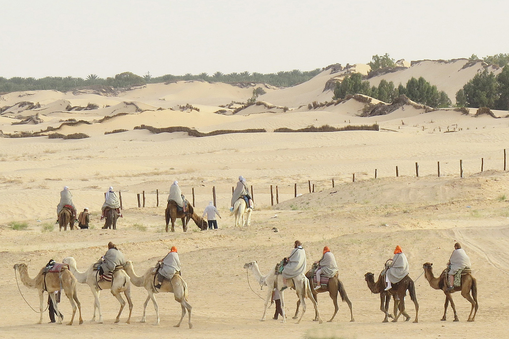 Am Rand der Sahara