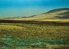Am rande der Wüste. Syrien..    .120_4058