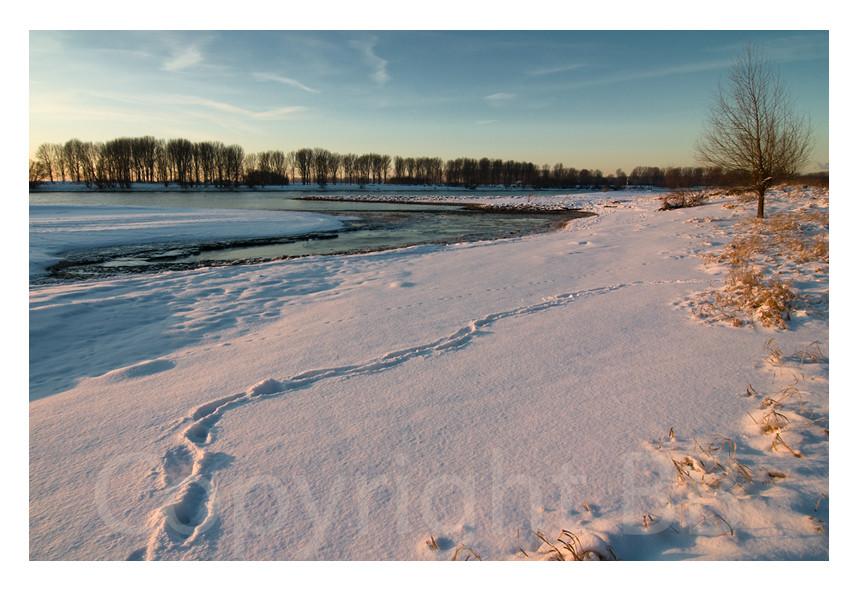 Am Rhein 3