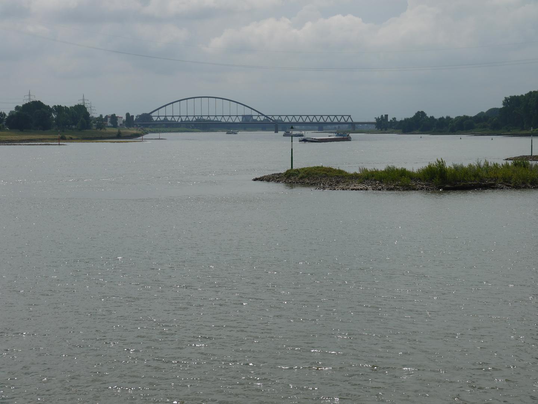 am Rhein in Heerdt