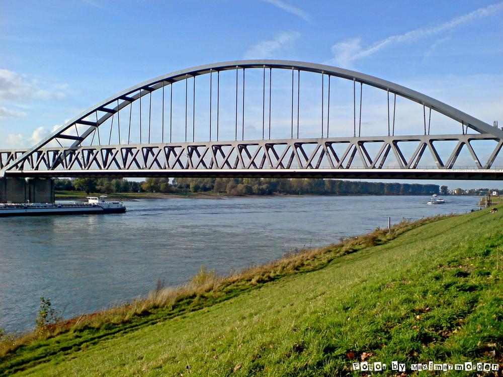 Am Rhein ist`s am schönsten