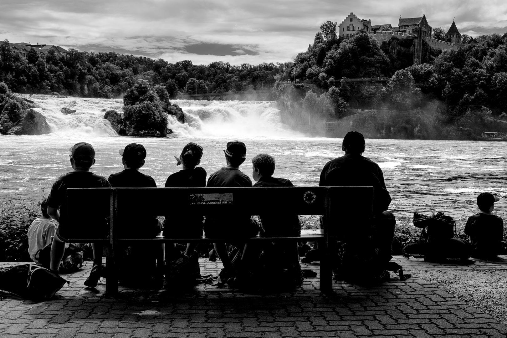 am Rheinfall 1
