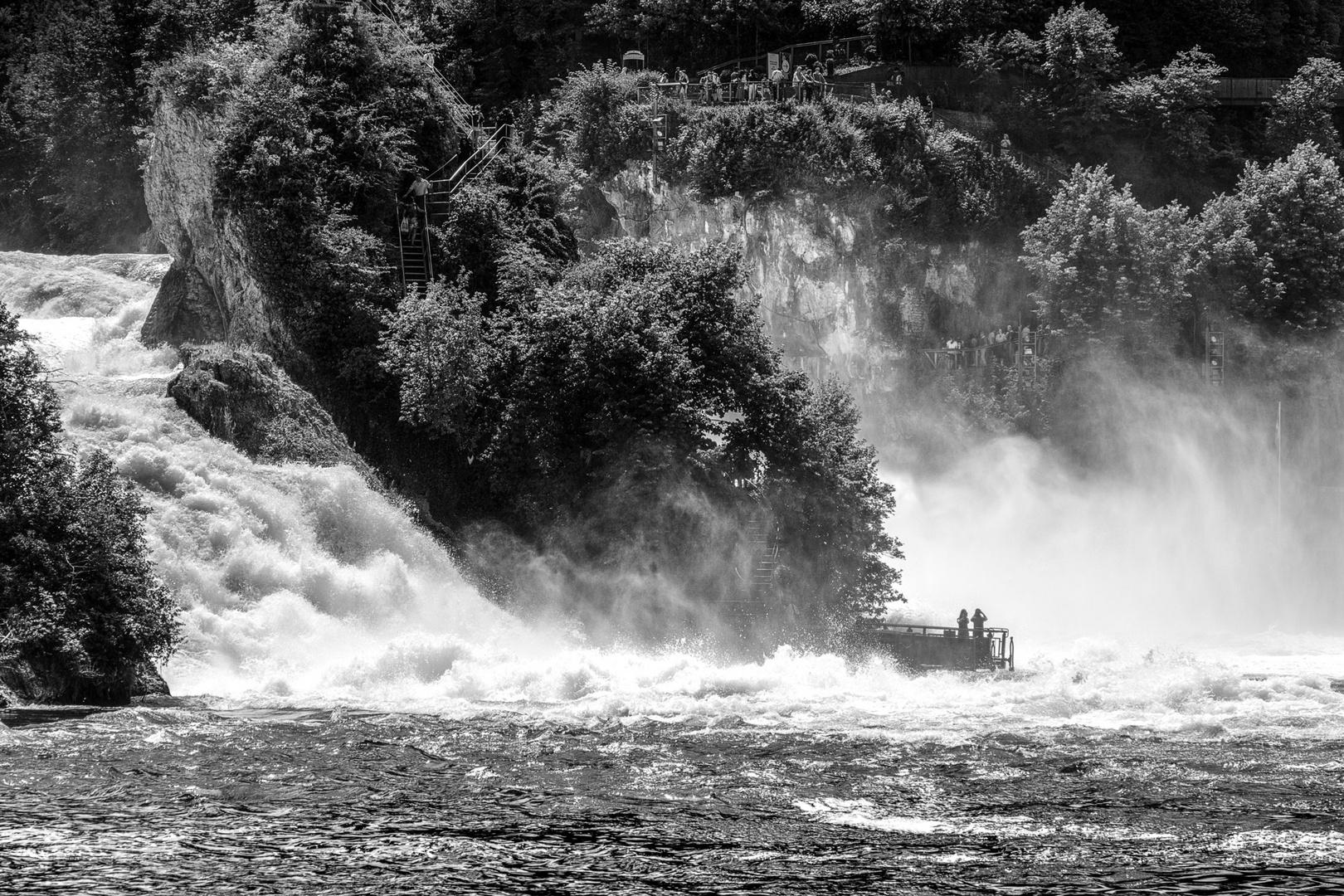 am Rheinfall 2