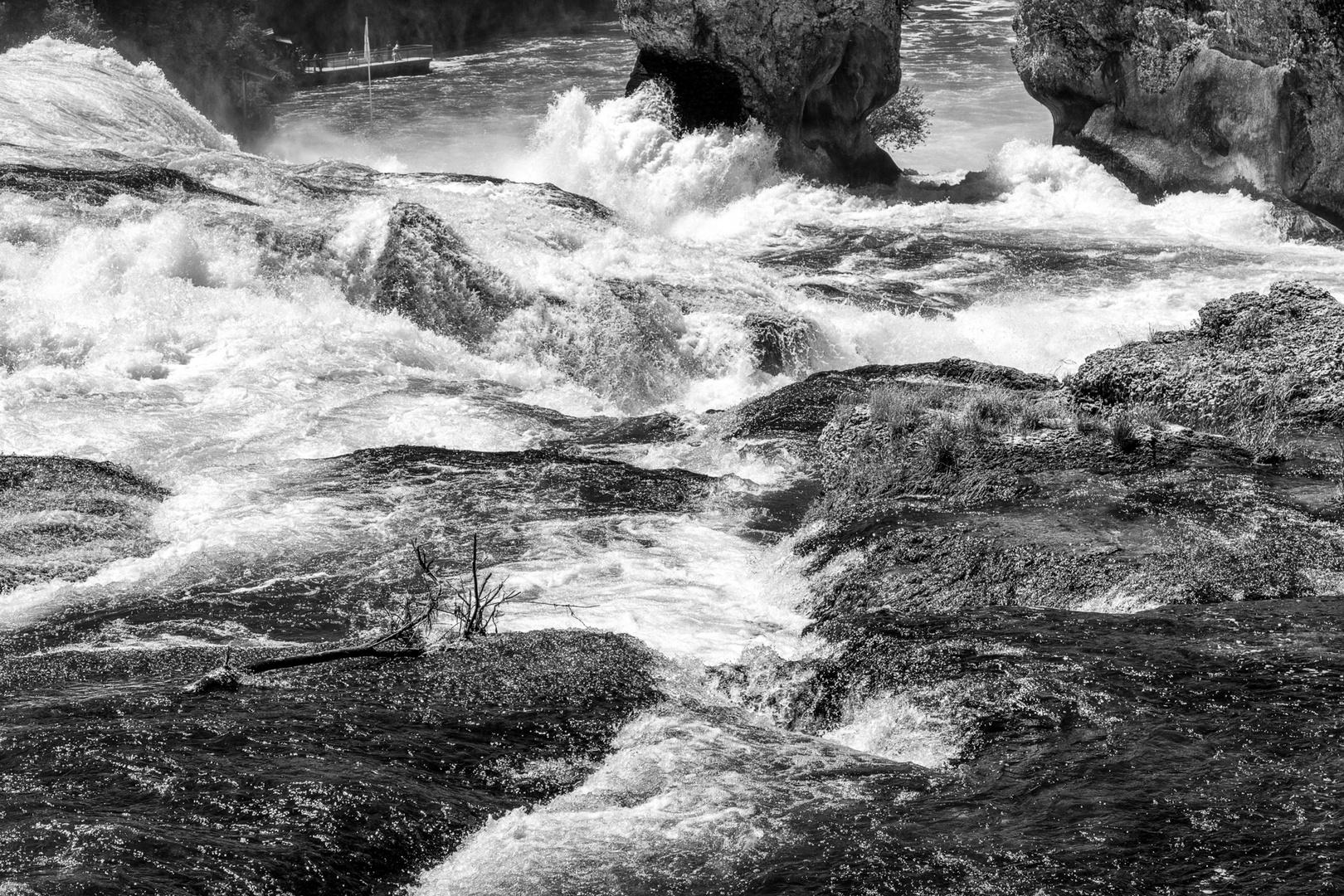am Rheinfall 3