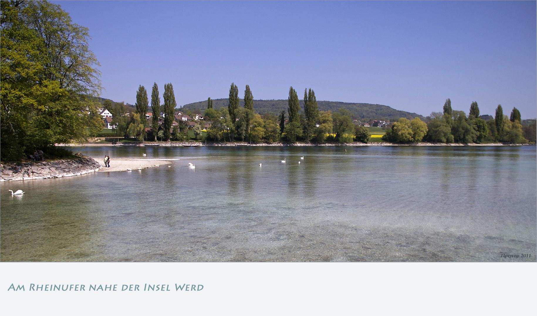 Am Rheinufer nahe der Insel Werd