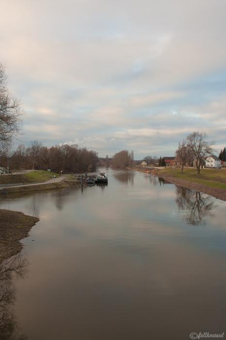 am Saalekanal