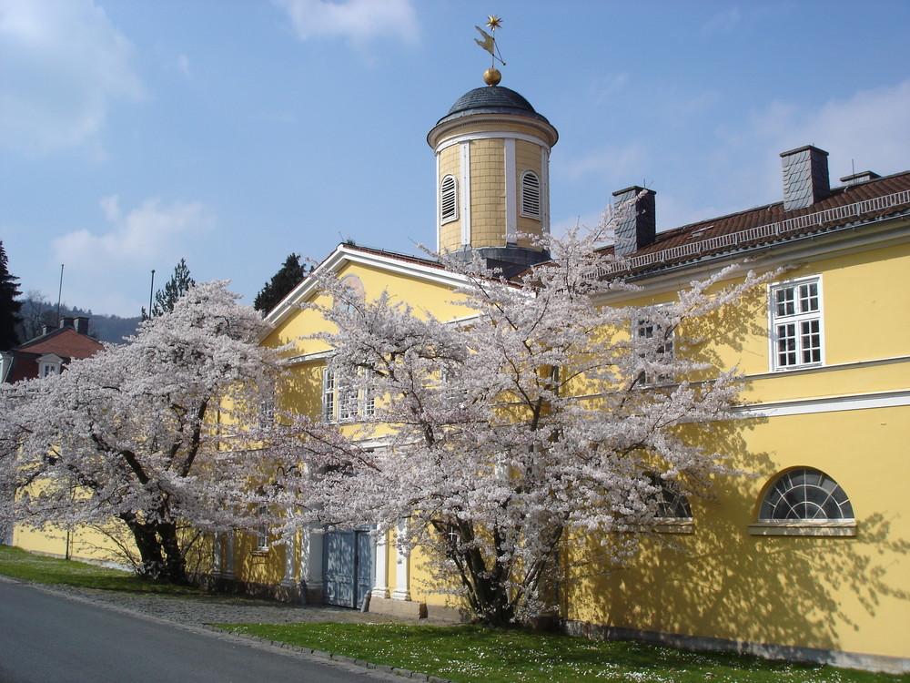 Am Schloss Wilhelmshöhe