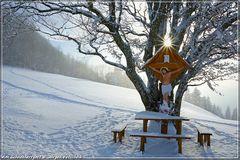 Am Schneeherrgott #2...