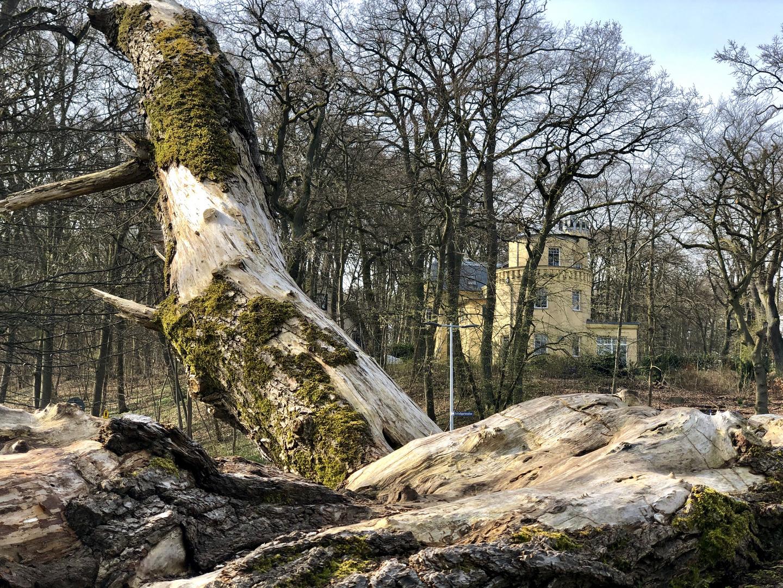 Am Schweriner See - Höhe Waldburg