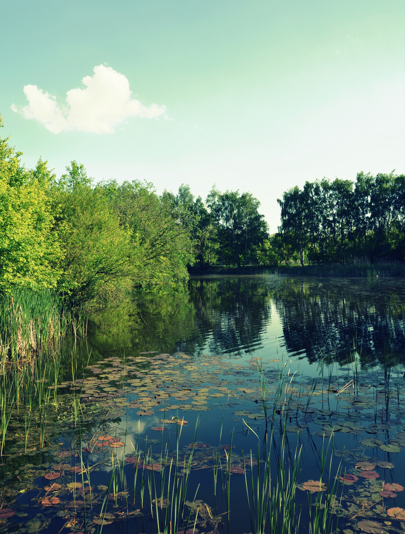 Am See . . .