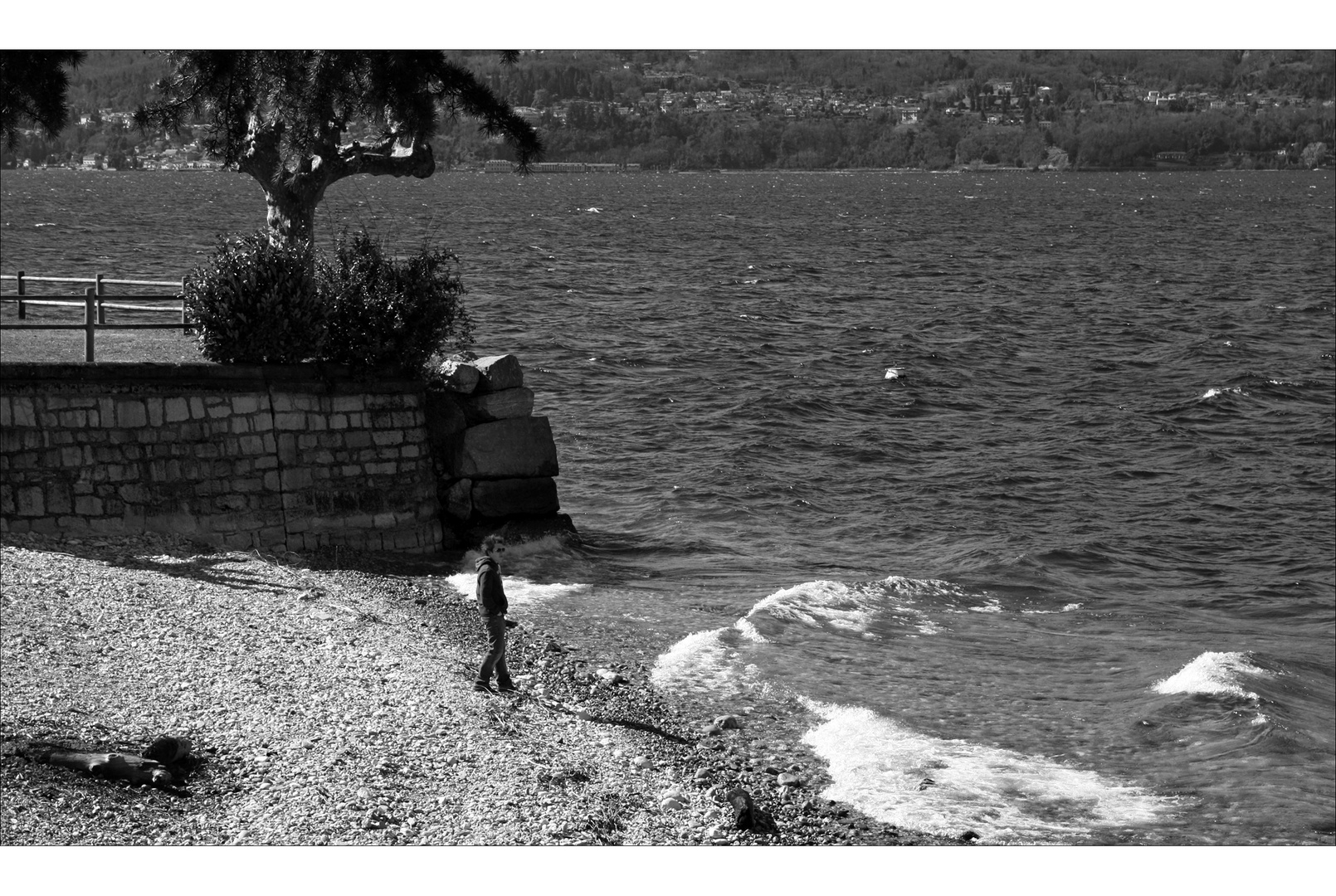 [ am see ]