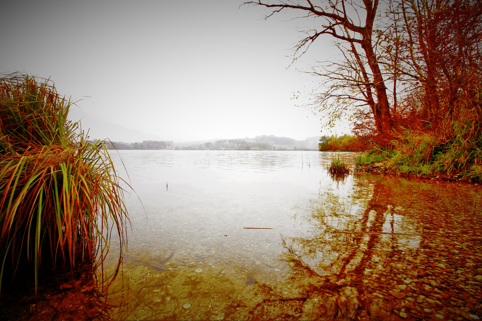 Am See2