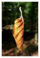 Am seidenen Faden hängen