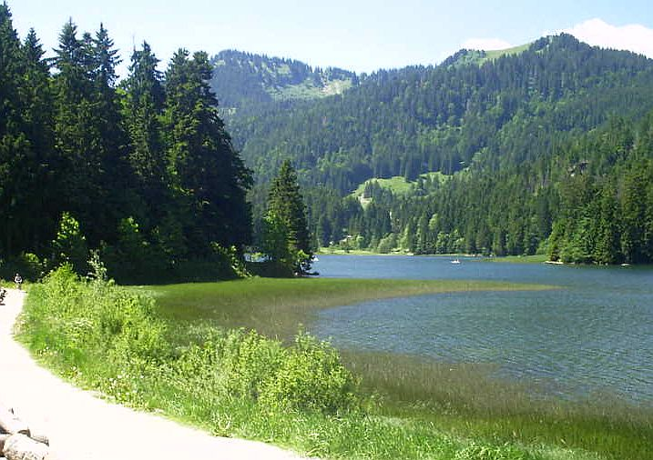 Am Spitzingsee