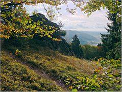 Am Steinbacher Felsen