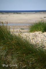Am Strand bei Wittdün