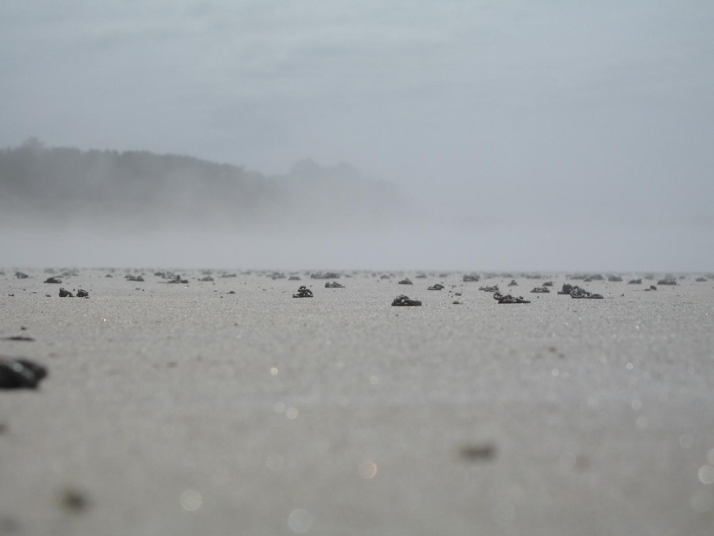 Am Strand der Bretagne