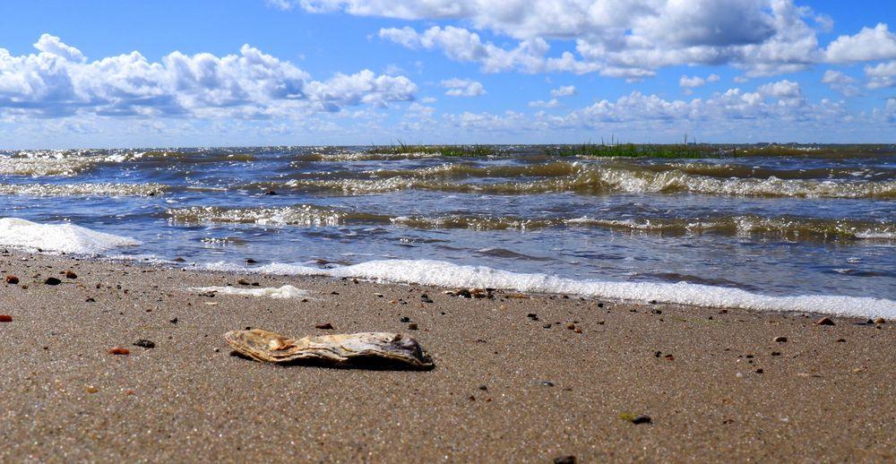 Am Strand von Emmerlev/Klev Dk.