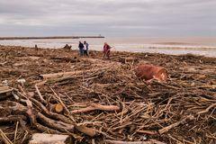 Am Strand von Les Cabanes de Fleury am Tag nach dem Unwetter