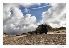 Am Strand von Nymindegab gesichtet......