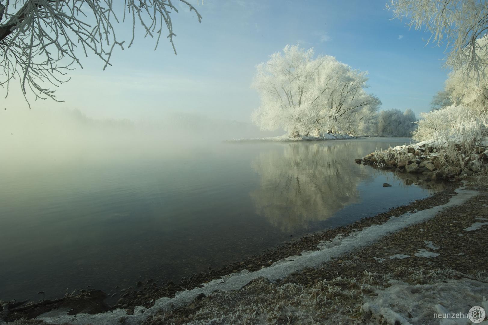 Am Ufer der Donau im Morgennebel II