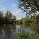 Am Ufer des Teiches