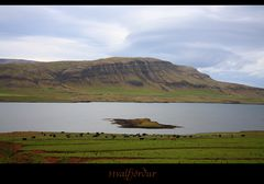 Am Walfjord