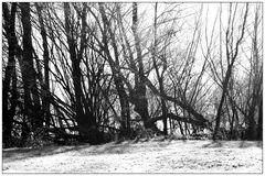 Am Werniggraben