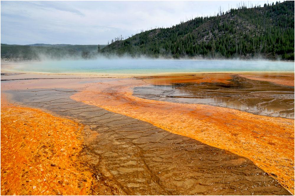 Amazing Yellowstone