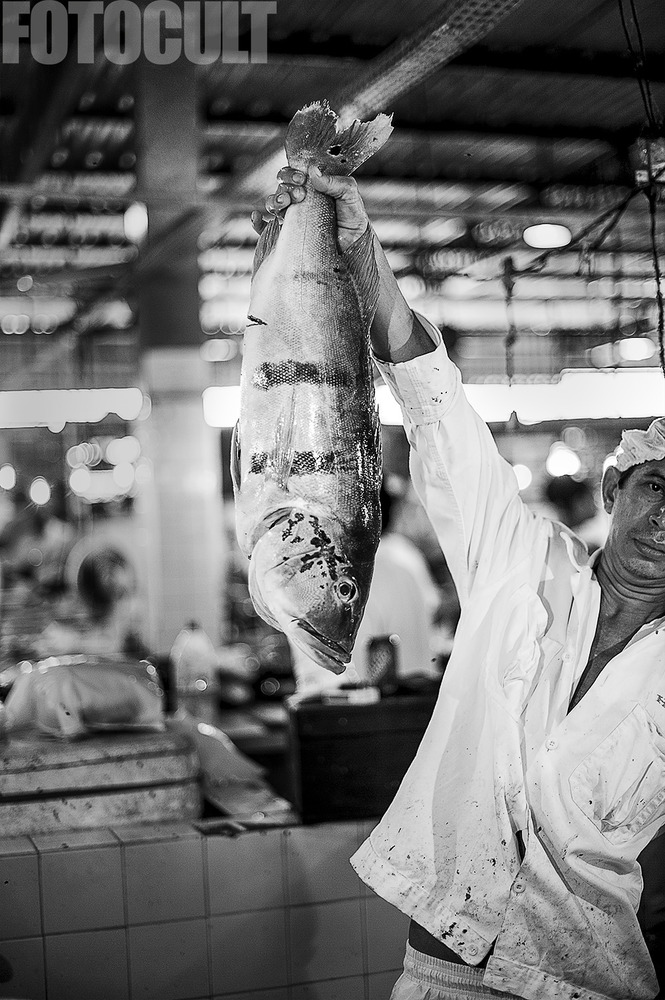 amazon fisherman 2