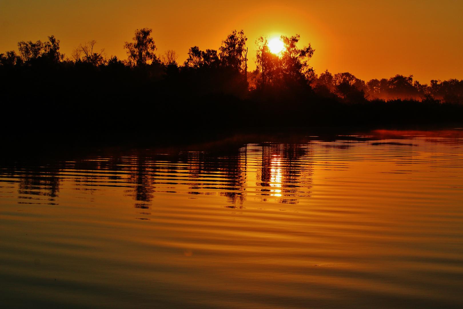 Bildergebnis für amazonas des nordens peene