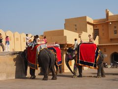 Amber Fort 028