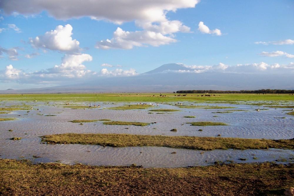 Amboseli et Kilimandjaro