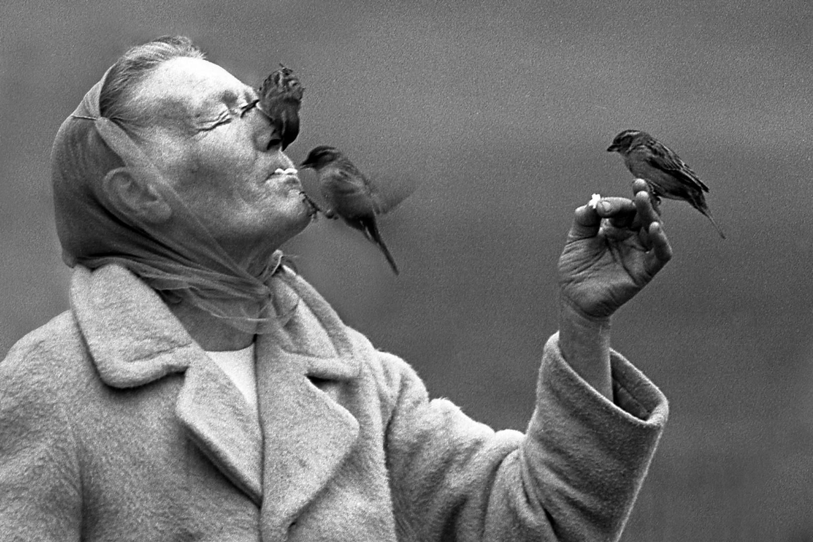 Amiga de los pájaros