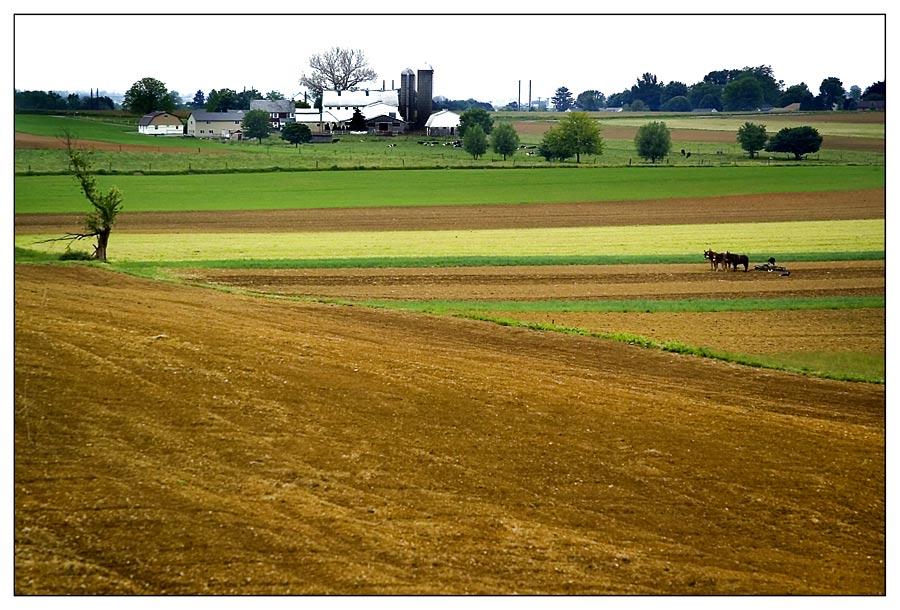 Amishland ....