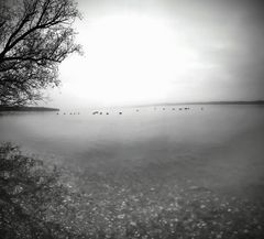 Ammersee 2