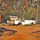 ** Amongst the Gum Trees / and free Spare Parts **