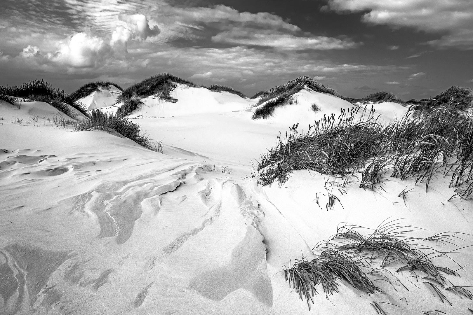 Amrum - Endlose Dünen