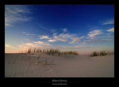 Amrum - White Dunes