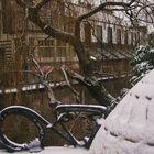 Amsterdam blanca